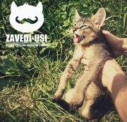 Экзотические кошки: каракалы,  сервалы,  гибриды Ф1
